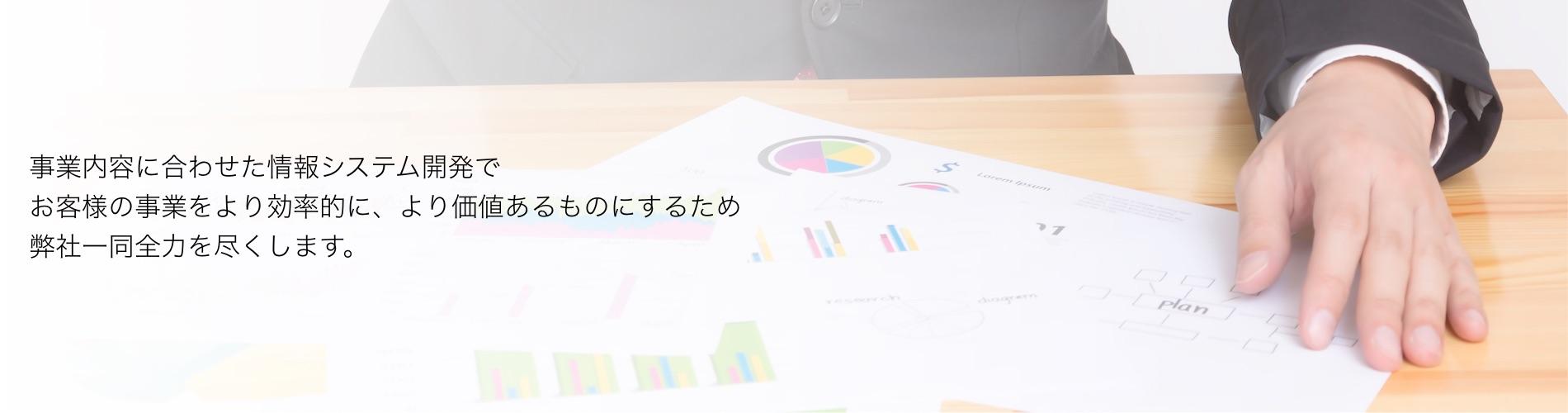 事業内容に合わせた情報システム開発でお客様の事業をより効率的に、より価値あるものにするため弊社一同全力を尽くします。